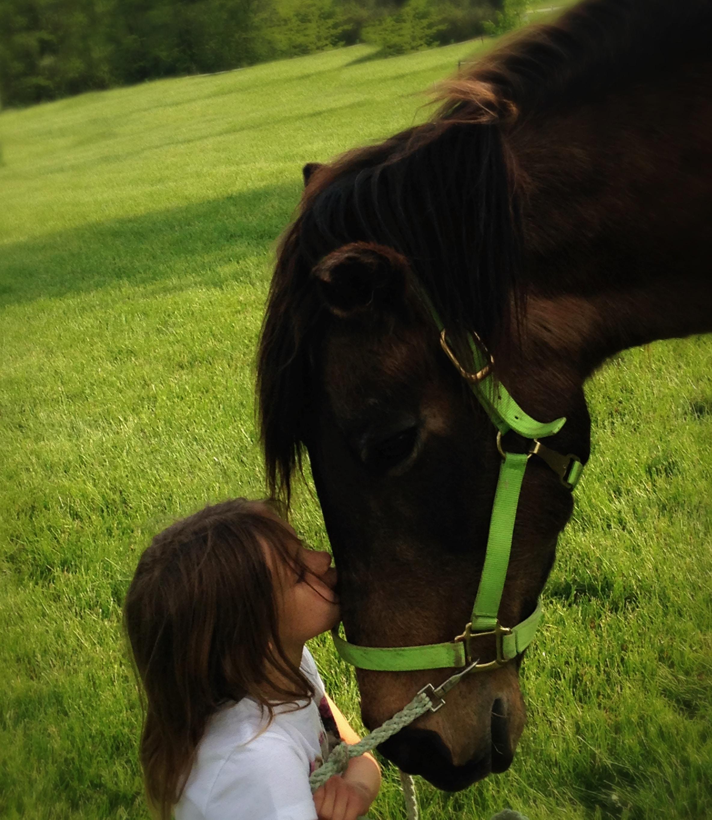 équitation - heureux en famille